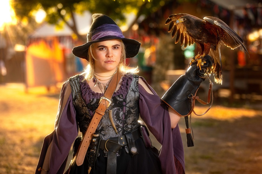 falconery ren faire