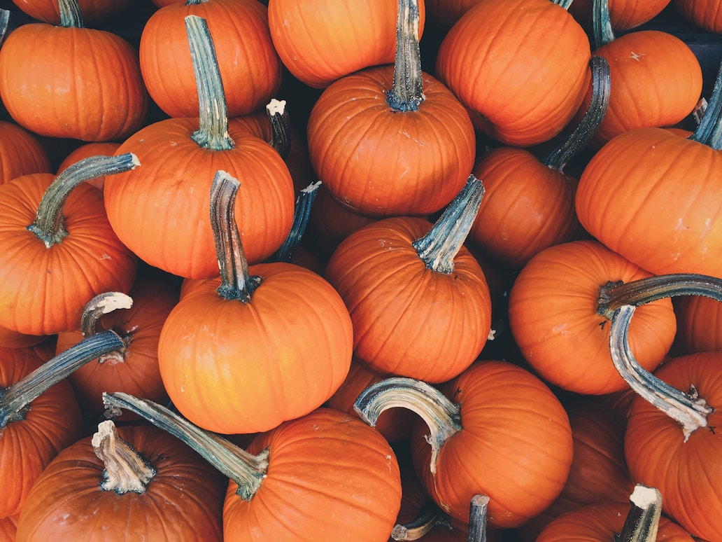 It's Fall Y'all! Halloween Life Hacks. Nancy Naigle