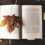 Books for Autumn Moods