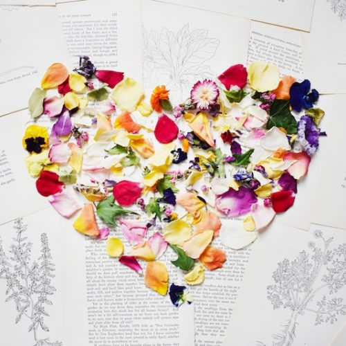 Trope Rec Tuesday: The Art of Flowers and Love