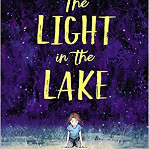 the light in the lake by sarah r baughman